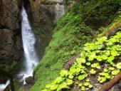 Obsteig waterval