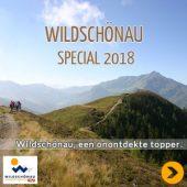 Wildschönau, onontdekte topper in Tirol