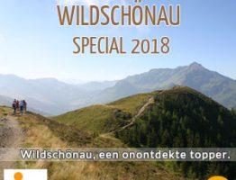 Wildschonau Ski Juwel van Tirol