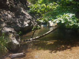 Samos waterval Potami