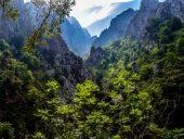Een groen landschap in de Picos de Europa